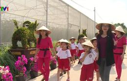 Trải nghiệm du lịch nông nghiệp sạch ở An Giang