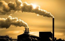 Ô nhiễm không khí tác động đến cơ thể chúng ta như thế nào?