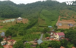 Người dân thôn Minh Tân (Sóc Sơn) bức xúc vì không được chấp nhận nguồn gốc đất