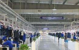 Trung Quốc cắt giảm nhiều loại thuế và phí để kích cầu