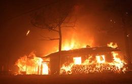 Chưa ghi nhận người Việt chịu thiệt hại trong vụ cháy lớn ở Hàn Quốc
