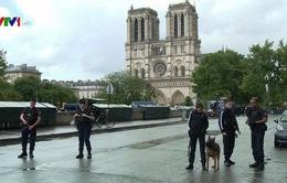 Pháp bác bỏ tiếp nhận các công dân Pháp gia nhập IS