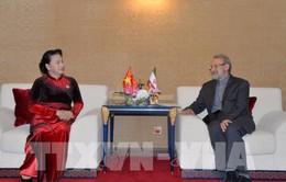 Việt Nam luôn coi trọng quan hệ hữu nghị và hợp tác với Iran