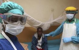 Nigeria phát hiện 16 trường hợp mới mắc sốt xuất huyết Lassa