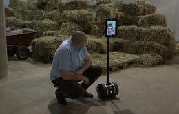 Robot giúp đưa trẻ bị bệnh đi sở thú