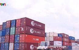 Đề xuất 2 phương án xử lý container phế liệu tồn đọng tại cảng biển
