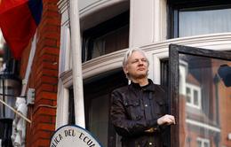 Ecuador sẽ điều tra nhà sáng lập WikiLeaks