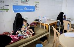 Yemen ban bố tình trạng khẩn cấp do dịch tả