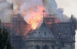 Pháp cảnh báo nguy cơ nhiễm độc chì sau vụ cháy Nhà thờ Đức Bà Paris