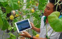 Nông dân sử dụng công nghệ trong nông nghiệp