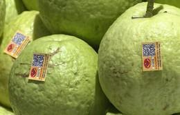 Hà Nội: Hơn 80% cửa hàng kinh doanh hoa quả có tem truy xuất