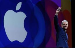 """Apple thắng lớn dù iPhone """"ế chỏng chơ"""""""