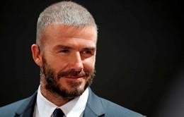 David Beckham gặp rắc rối pháp luật vì lý do không ai ngờ tới