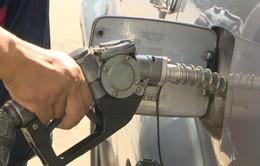 Giá xăng có thể tăng trong hôm nay