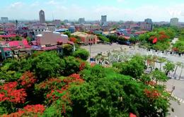 VTV truyền hình trực tiếp Lễ hội Hoa phượng đỏ - Hải Phòng 2019 (20h10, VTV1)