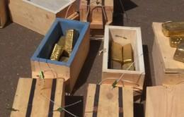 Sudan: Thu giữ 241kg vàng nghi buôn lậu trái phép