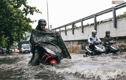 Cảnh báo mưa lớn, ngập úng ở Tây Nguyên, Nam Bộ