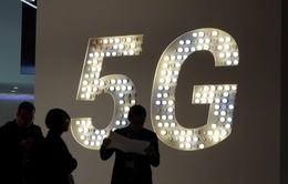 Mạng 5G sẽ bảo vệ tốt hơn mô hình xã hội của châu Âu
