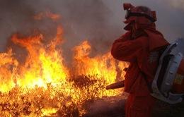 Cháy rừng lan rộng ở Tây Nam Trung Quốc