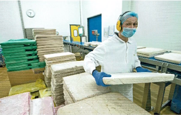Cơ hội cho các nước xuất khẩu cá thịt trắng