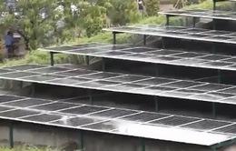 Cho mượn mái nhà - Không tốn tiền vẫn có điện dùng