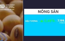 Giá đậu tương tăng