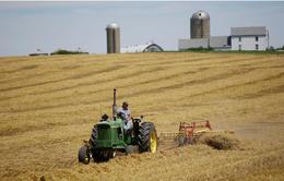 Mỹ ưu tiên hỗ trợ 5 mặt hàng nông sản tại 5 bang do cuộc chiến thương mại