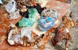 Thái Nguyên: Thu giữ số lượng lớn động vật và xương động vật hoang dã