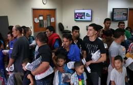 Mỹ tạo điều kiện nhập cư cho người có trình độ học vấn