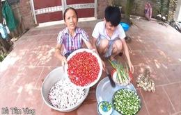 Nông dân Việt Nam làm Youtube