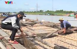 Công an điều tra nguyên nhân gần 340 tấn cá bè bị chết trên sông La Ngà