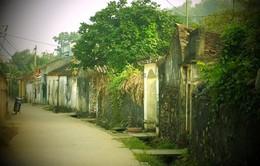 Đến Thanh Hóa để cảm nhận cuộc sống của làng quê xưa