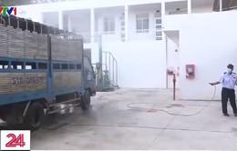 TP.HCM: Siết chặt các cửa ngõ ngăn dịch tả lợn châu Phi