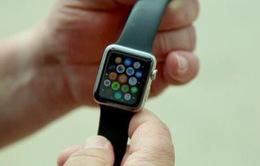 Rơi xuống biển 6 tháng, Apple Watch vẫn chạy bình thường