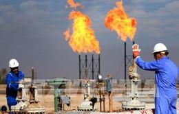 Hàn Quốc dừng nhập khẩu dầu thô từ Iran