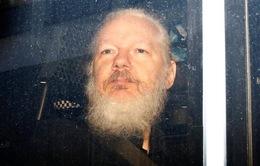 Nhà sáng lập Wikileaks bị phạt tù 50 tuần