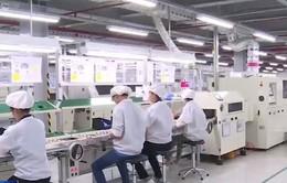 Nhà máy tập đoàn đa quốc gia ồ ạt tuyển nhân sự