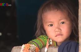 Đắk Lắk: Di dân tự do và những hậu quả kéo dài