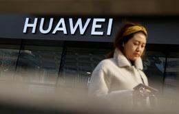 Ai được lợi từ cuộc khủng hoảng Huawei?