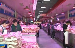 Canada bán thịt lợn nội địa sang Trung Quốc