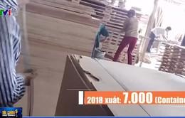 Bất thường quanh con số xuất khẩu gỗ ép từ Việt Nam vào Mỹ