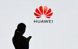 Huawei phản hồi về việc bị Google ngừng cấp phép Android