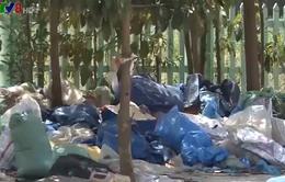 Trạm xử lý nước thải gây ô nhiễm khu dân cư tại Quảng Ngãi