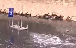 Sông Tô Lịch chuyển biến tích cực sau khi áp dụng công nghệ xử lý ô nhiễm