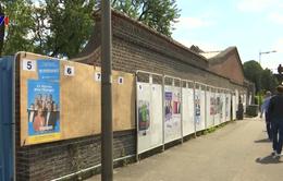 Cử tri châu Âu bắt đầu bầu cử nghị viện khóa mới