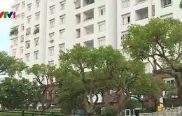 """Thị trường bất động sản TP.HCM """"vắng bóng"""" nhà ở giá rẻ"""