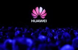 Làn sóng tẩy chay Huawei: Cơn ác mộng bất ngờ và tương lai nào cho gã khổng lồ công nghệ Trung Quốc ở thị trường quốc tế