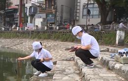 Hà Nội: Nâng cao chất lượng xử lý nước hồ