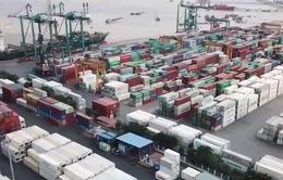 Vốn đầu tư nước ngoài đổ mạnh vào Việt Nam