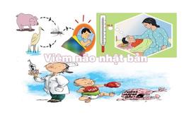 Cảnh báo viêm não Nhật Bản vào mùa dịch